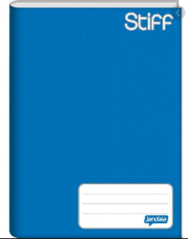 BIGNARDI - CADERNO BROCHURA 1/4 48FLS AZUL (STIFF) - UN